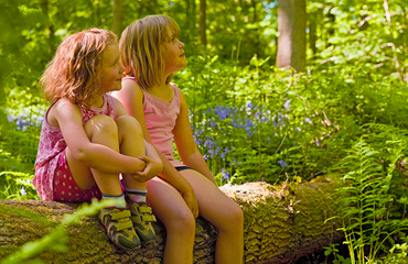 Two girls sitting on branch in forest
