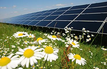 Hive energy solar panels